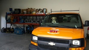 Water Damage Restoration SUV and Dog