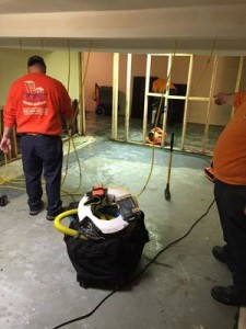 Water Damage Team Conducting Mold Removal