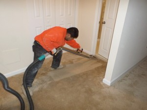 Water Repair and Cleanup Paterson Technician